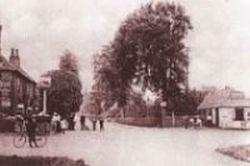 Roundabout c1900